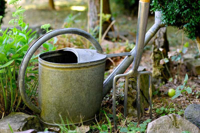 Watering Can and Garden Fork